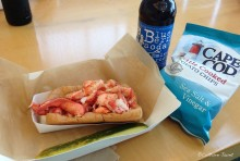 All Lobster Roll