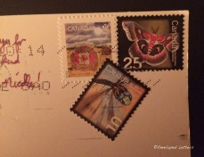 Check out those stamps!