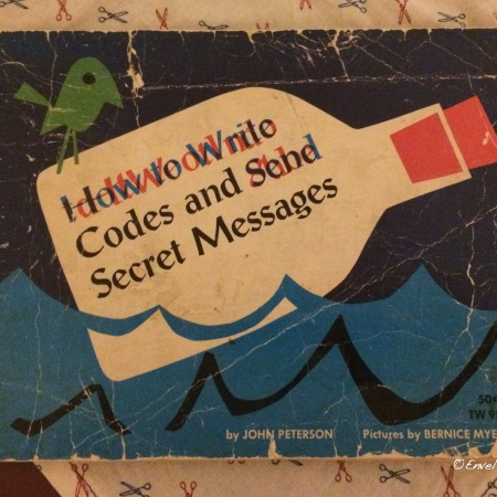 Secret messages book