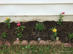 Plant bed middle