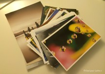 A wonderful stack of postcards I received from a fellow LEp member.